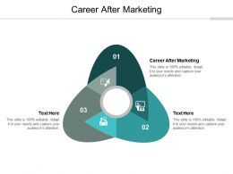 Career After Marketing Ppt Powerpoint Presentation File Templates Cpb