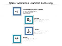 Career Aspirations Examples Leadership Ppt Powerpoint Presentation Infographic Template Format Cpb