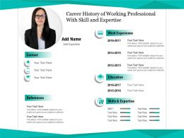 Career History Of Working Professional With Skill And Expertise