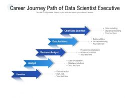 Career Journey Path Of Data Scientist Executive