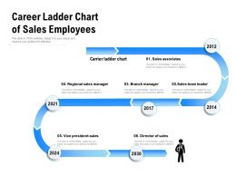 Career Ladder Chart Of Sales Employees