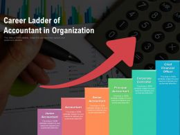 Career Ladder Of Accountant In Organization