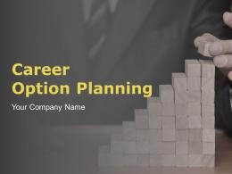 Career Option Planning Powerpoint Presentation Slides
