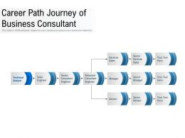 Career Path Journey Of Business Consultant