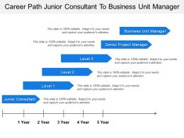 Career Path Junior Consultant To Business Unit Manager