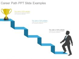 Career Path Ppt Slide Examples