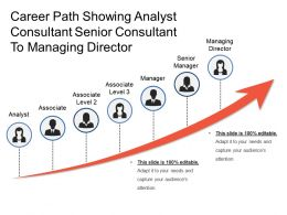 Career Path Showing Analyst Consultant Senior Consultant To Managing Director