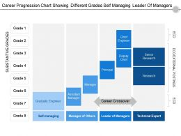 Career Progression Chart Showing Different Grades Self Managing Leader Of Managers