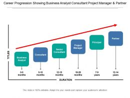 Career Progression Showing Business Analyst Consultant Project Manager And Partner