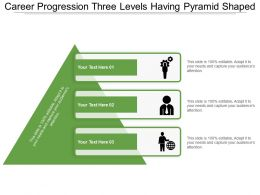 Career Progression Three Levels Having Pyramid Shaped