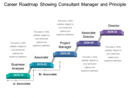 Career Roadmap Showing Consultant Manager And Principle
