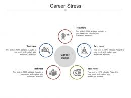 Career Stress Ppt Powerpoint Presentation Introduction Cpb