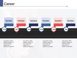 Career Timeline Management Ppt Powerpoint Presentation Portfolio Format Ideas