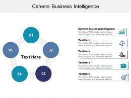 Careers Business Intelligence Ppt Powerpoint Presentation Outline Layout Ideas Cpb