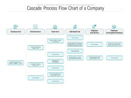 Cascade Process Flow Chart Of A Company
