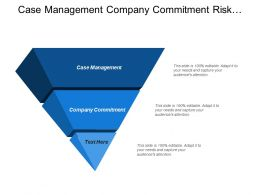 Case Management Company Commitment Risk Assessment Risk Management
