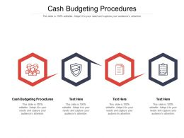 Cash Budgeting Procedures Ppt Powerpoint Presentation Background Image Cpb