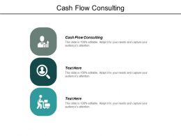 Cash Flow Consulting Ppt Powerpoint Presentation Microsoft Cpb