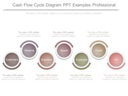 Cash Flow Cycle Diagram Ppt Examples Professional