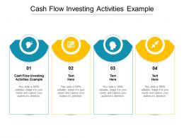 Cash Flow Investing Activities Example Ppt Powerpoint Presentation Icon Picture Cpb