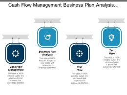 Cash Flow Management Business Plan Analysis Social Media Cpb