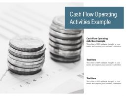 Cash Flow Operating Activities Example Ppt Powerpoint Presentation Professional Graphics Pictures Cpb