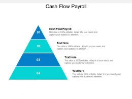 Cash Flow Payroll Ppt Powerpoint Presentation Styles Shapes Cpb