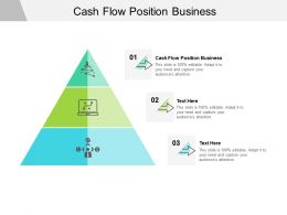 Cash Flow Position Business Ppt Powerpoint Presentation Show Infographic Template Cpb