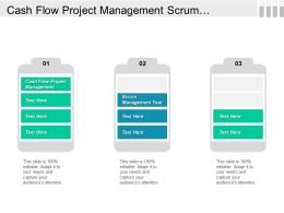 Cash Flow Project Management Scrum Management Tool Dmaic Model Cpb
