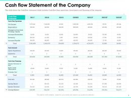 Cash Flow Statement Of The Company Expenditures Ppt Powerpoint Visual Aids