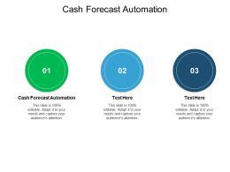 Cash Forecast Automation Ppt Powerpoint Presentation Portfolio Deck Cpb