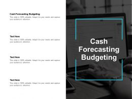 Cash Forecasting Budgeting Ppt Powerpoint Presentation Icon Backgrounds Cpb
