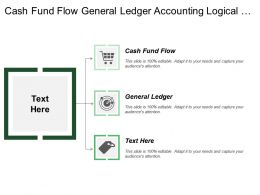Cash Fund Flow General Ledger Accounting Logical Design