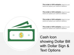 Cash Icon Showing Dollar Bill With Dollar Sign And Text Options