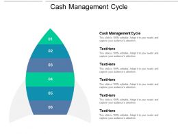 Cash Management Cycle Ppt Powerpoint Presentation Professional Themes Cpb