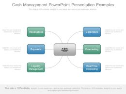 Cash Management Powerpoint Presentation Examples