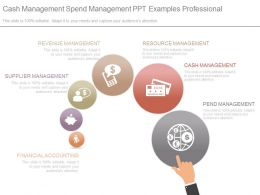 Cash Management Spend Management Ppt Examples Professional
