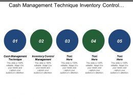 Cash Management Technique Inventory Control Management System Life Cycle
