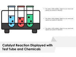 Catalyst Reaction Displayed With Test Tube And Chemicals