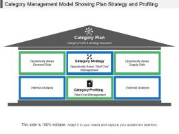 Category Management Model Showing Plan Strategy And Profiling