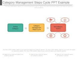 Category Management Steps Cycle Ppt Example