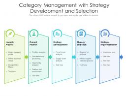 Category Management With Strategy Development And Selection