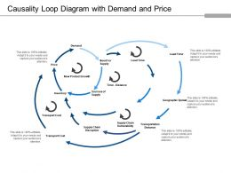 Causality Loop Diagram With Demand And Price