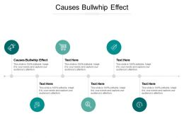Causes Bullwhip Effect Ppt Powerpoint Presentation Icon Mockup Cpb