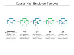 Causes High Employee Turnover Ppt Powerpoint Presentation Styles Skills Cpb
