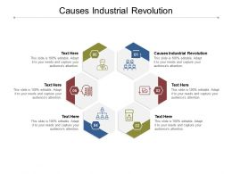 Causes Industrial Revolution Ppt Powerpoint Presentation Styles Gallery Cpb