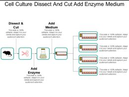 Cell Culture Dissect And Cut Add Enzyme Medium
