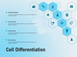 Cell Differentiation Ppt Powerpoint Presentation Portfolio Example