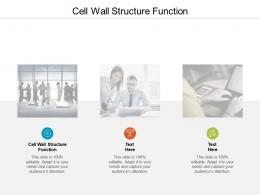 Cell Wall Structure Function Ppt Powerpoint Presentation Model Information Cpb