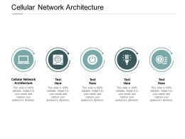 Cellular Network Architecture Ppt Powerpoint Presentation Icon Outfit Cpb